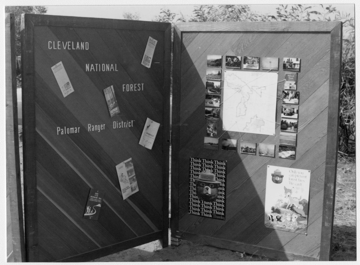 Arbor Day, Wild Animal Park, Display Board USDA [U.S. Department of Agriculture] Forest Service
