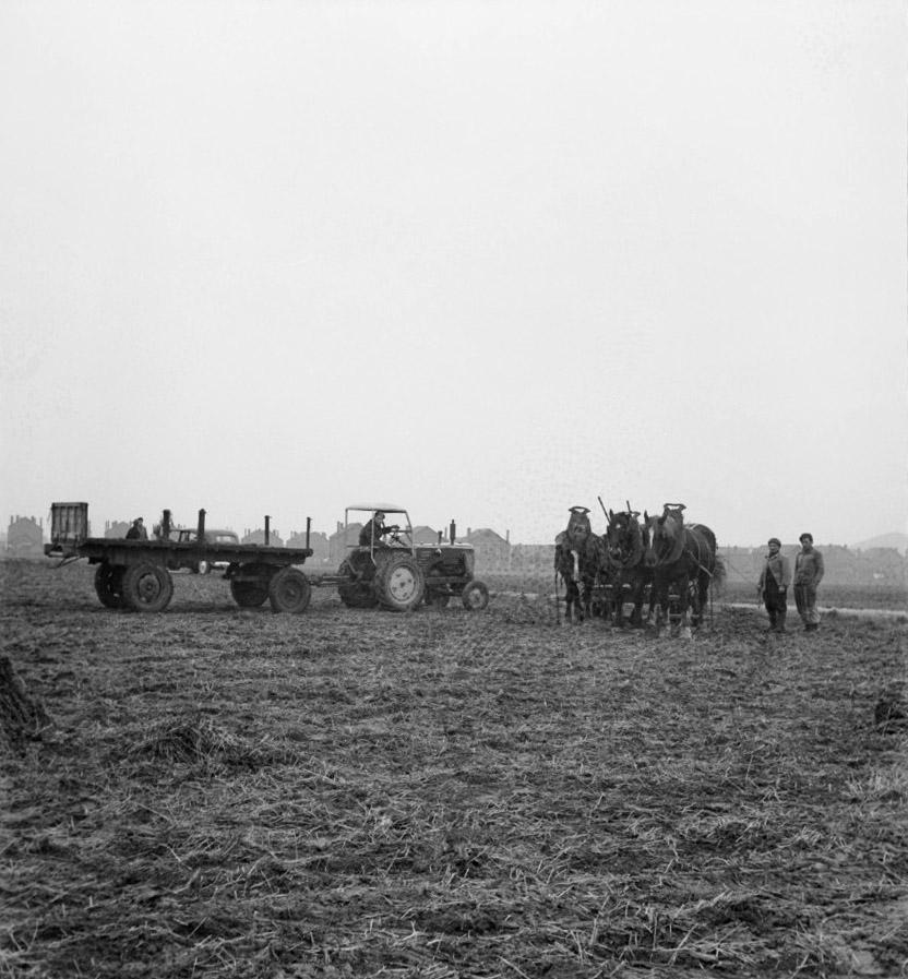 Tractor] - [Roubaix Wool Industry