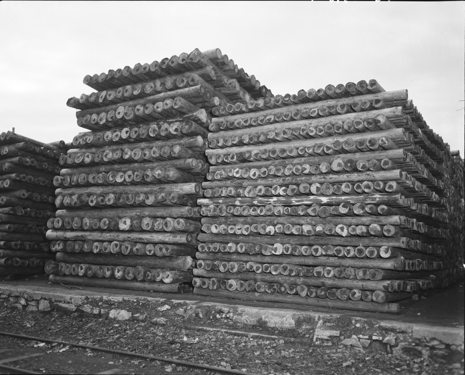 Roubaix Wool and Housing] - [Marshall Plan Revives Roubaix, the Capital of the French Wool Industry